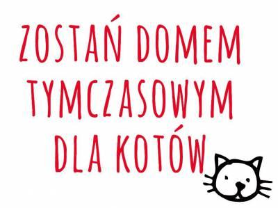 www.kociagromadka.pl