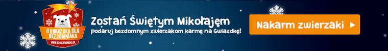 """""""Gwiazdka dla bezdomniaka""""6"""