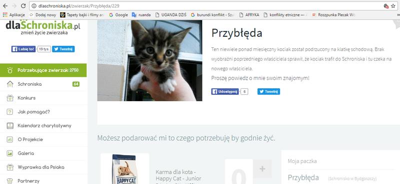 """""""Gwiazdka dla bezdomniaka""""3"""