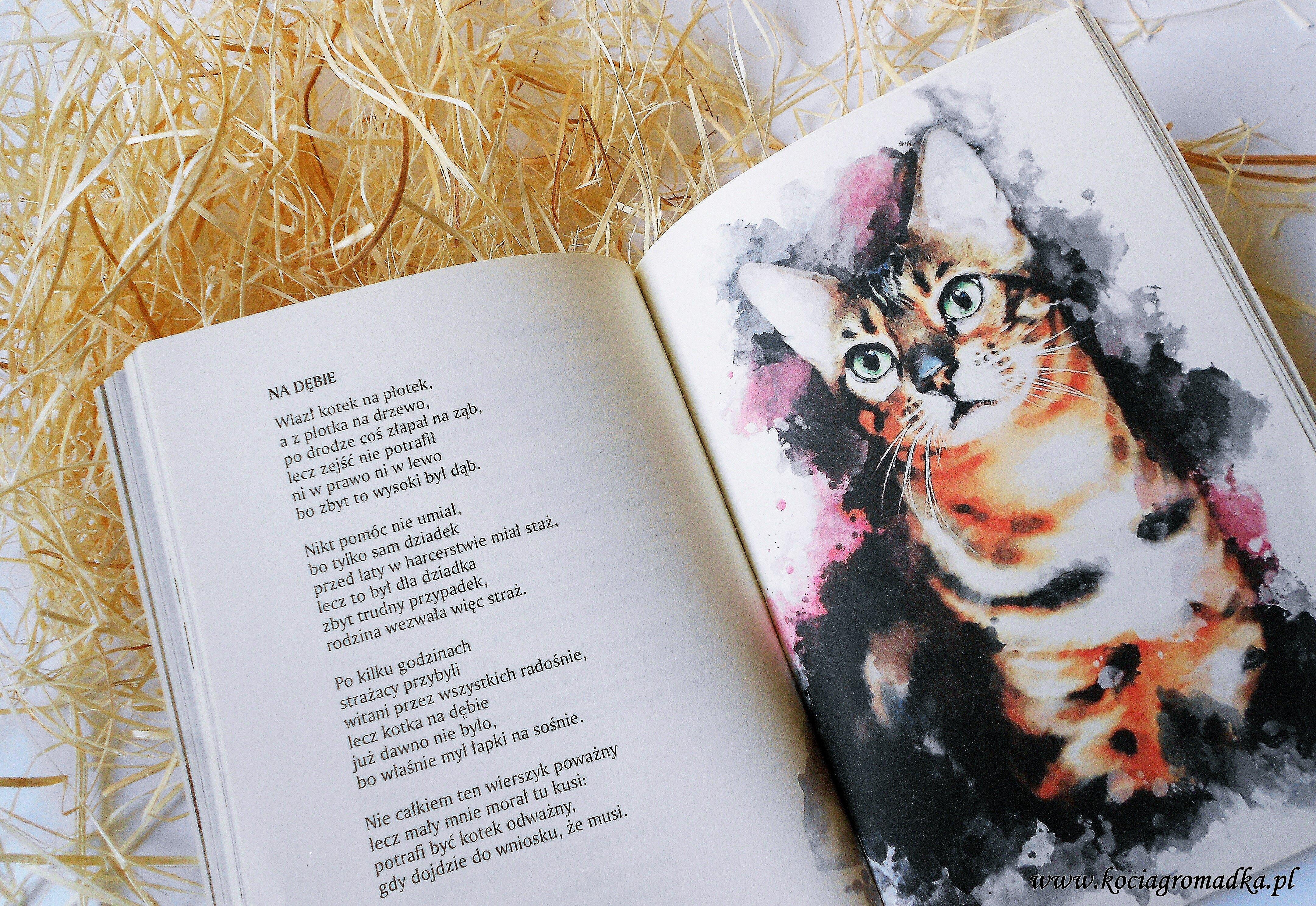 Tomik Poezji O Kotach Franciszka J Klimka Najpiękniejsze